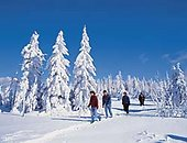 Ski-Karte Bayerischer Wald