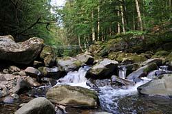 Buchberger Leite zum Wandern im Bayerischen Wald.
