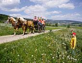 Kutschenfahrt im Sommerurlaub im Bayerischen Wald