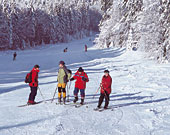 Skifahren über Weihnachten 2019.Weihnachten 2019 Urlaub 2019 Im Bayerischen Wald Weihnachten 2019