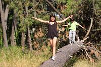 Wanderwege durch den Bayerischen Wald