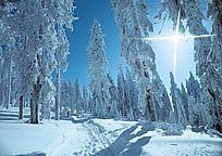Winterurlaub am Dreisessel