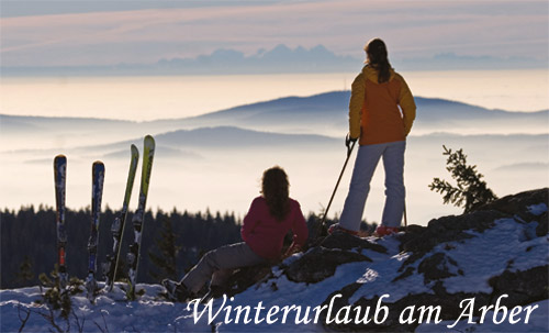 winterurlaub am arber winter in bayern winterurlaub im bayerischen wald wintersport. Black Bedroom Furniture Sets. Home Design Ideas