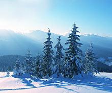 Winterurlaub {Jahr},  Urlaub mit der Familie im Bayerischen Wald