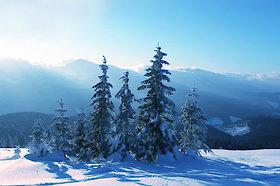 Urlaub im Nationalpark Bayerischer Wald