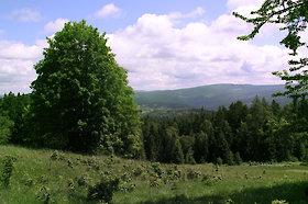 Kurzurlaub im Böhmerwald Nationalpark