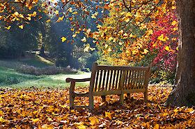 Herbsturlaub im Bayerischen Wald